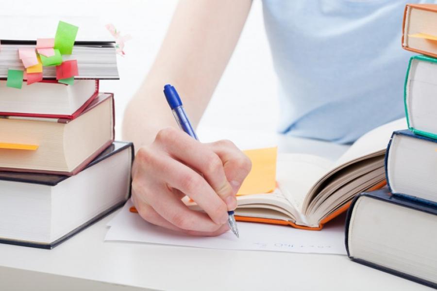 VEREADORES APROVAM AUXILIO EDUCAÇÃO PARA PROFESSORES